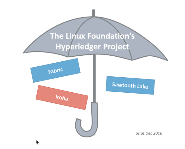 A gentle introduction to The Hyperledger Project